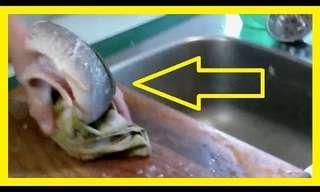 רץ ברשת: דג בלי ראש מתקיף אישה