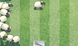 רועה הצאן - משחק ממכר!