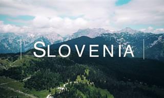 סרטון שמציג את מיטב נופיה של סלובניה