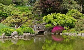 הגן הבוטני היפהפה והססגוני של ניו יורק