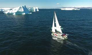 צפו במסע עוצר נשימה של הרפתקן צעיר על סירת מפרש בגרינלנד