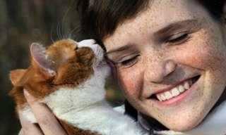 """איך חתול אומר """"אני אוהב אותך""""?"""