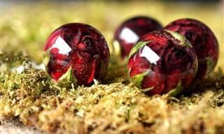 17 תמונות של תכשיטים יפהפיים שמכילים חומרים טבעיים