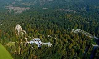 עד הצמרת - חוויית מבקרים ביער בוואריה!