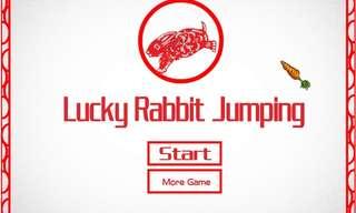 מזל של ארנבים - משחק ממכר!
