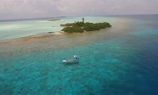 סרטון אווירי מרהיב חושף את יופיים הנדיר של האיים המלדיביים