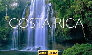 טיול בטבע המדהים של קוסטה ריקה באיכות 4K