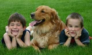 למה כל ילד צריך כלב?