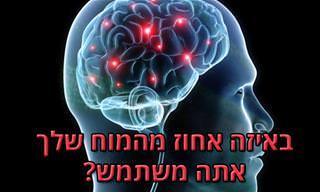 מבחן אישיות: באיזה אחוז מהמוח שלך אתה משתמש?