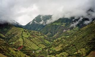 מסע מצולם אל פלאי הטבע של אקוודור: יערות האמזונס ואיי גלאפזוס