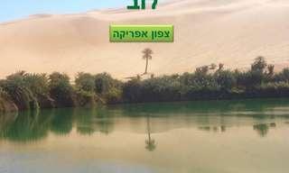 פנינת צפון אפריקה - ההיסטוריה והנופים של לוב
