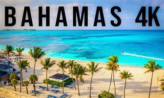 צפו בנופיה היפהפיים והאקזוטיים של נסאו, בירת איי הבהאמה