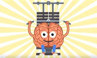 8 חידות בתמונות שיגרמו למוח שלכם לעבוד
