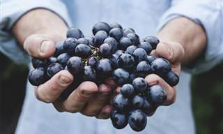 הפירות והירקות שישפרו לכם את תפקוד המוח