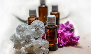 12 שמנים אתריים טבעיים לטיפול במגוון סוגי כאבים