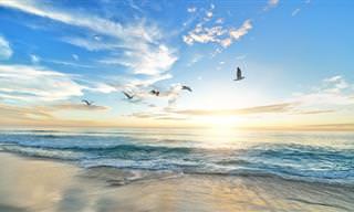 דוד אשל מספר על בריאת העולם והאדם בדרך קסומה ויצירתית להפליא