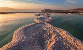 6 מסלולי טיולים מומלצים באזור ים המלח