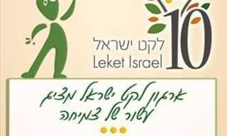 חלום של אדם אחד הופך למציאות: סיפורה של עמותת לקט ישראל
