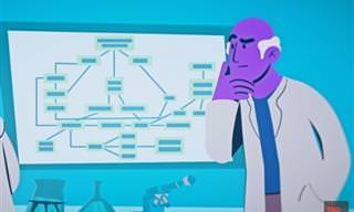 המצאות מדהימות: האם כך ייראה העתיד של הבדיקות לגילוי סרטן?