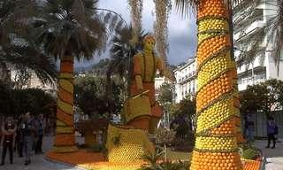 הכל הופך לכתום בפסטיבל התפוזים בצרפת