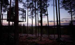 מלון ידידותי לסביבה ביער שוודי - מדהים!