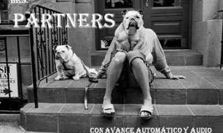 אוהבי חיות - רגעים מרגשים