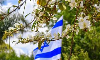 מפה אינטראקטיבית של גנים לאומיים ושמורות טבע בישראל