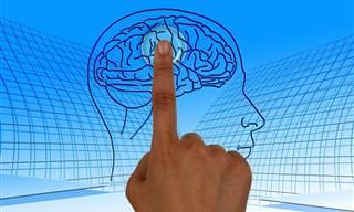 9 טריקים יעילים ויצירתיים לשיפור תפקודי הגוף והמוח