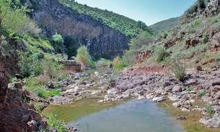 12 שמורות טבע יפהפיות בארץ