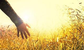9 דברים שחשוב לזכור כשדברים נמצאים מחוץ לשליטתכם