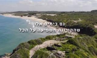 איך נראה הטבע הישראלי בזמן תקופת הקורונה?
