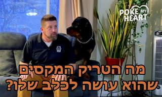 נסו לעשות לכלב שלכם את הטריק החמוד הזה ותראו מה יקרה!