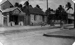 תמונות מקינגסטון - ג'מייקה הצבעונית