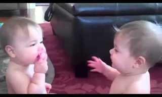 מה עושים שני תינוקות שקיבלו רק מוצץ אחד?