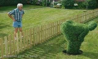 סיכסוכי שכנים - לגזור ולשמור