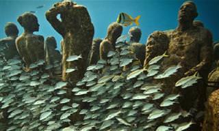 אולם התצוגה התת-ימי של ג'ייסון דה קייר טיילור