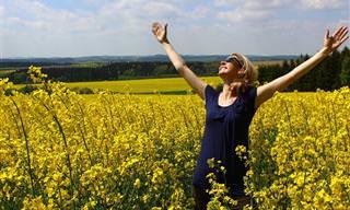 6 שיעורים פשוטים שילמדו אתכם איך להיות מאושרים