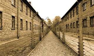 השיעור החשוב שלמדתי מאושוויץ