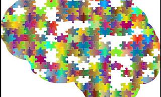 מרתק: טכנולוגיות מחשבים חדשות שיכולות לפענח את מסתורי המוח
