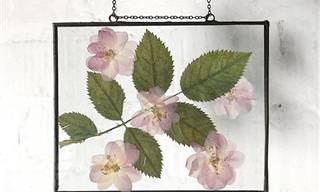18 יצירות יפהפיות של פרחים מיובשים