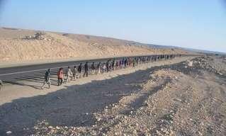 מדינת ישראל נכבשת בהליכה
