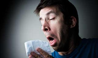14 תרופות טבעיות להתמודדות עם אלרגיה