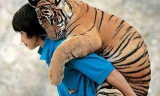 חיות ובני אדם ברגעים מרגשים