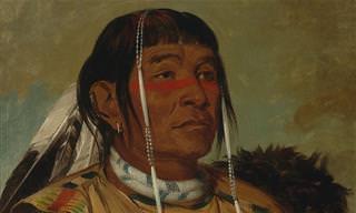 8 צמחי מרפא שהאינדיאנים היו משתמשים בהם