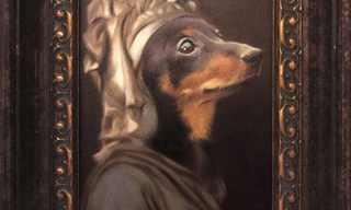 פורטרטים של כלבים - אמנות מיוחדת!