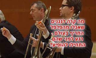 התזמורת הקאמרית של דנמרק אוכלת מהפלפל החריף בעולם ומנגנת יצירה קלאסית