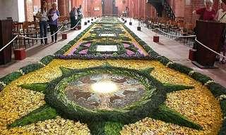 פסטיבל הפרחים בסיציליה - צבעוניות מרהיבה