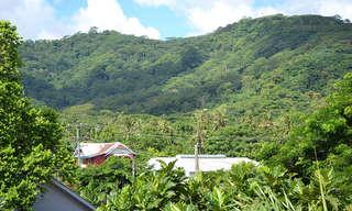 קפיצה לאיי סמואה - גן עדן טרופי עלי אדמות!
