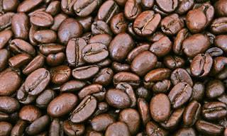 15 שימושים מפתיעים ויעילים לקפה