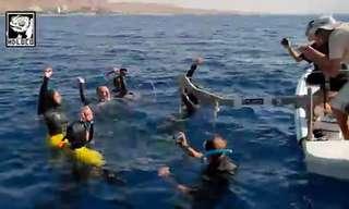 שיא ישראלי עוצר נשימה בעומק 100 מטר!